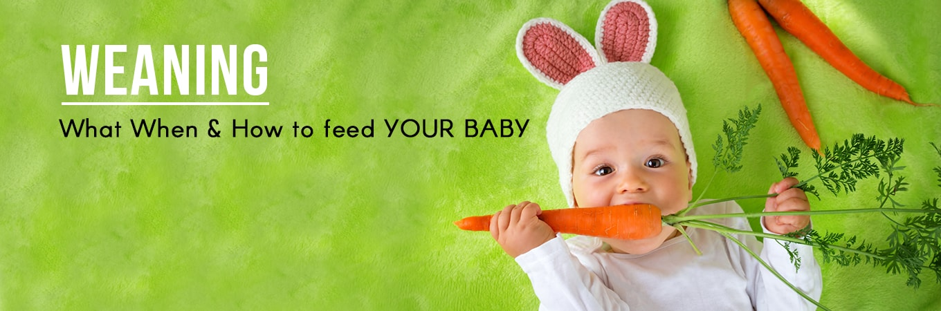 Food Plans for baby